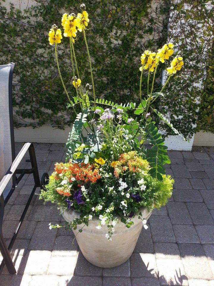 Garden Design Garden Design with Tampa Container Gardening for