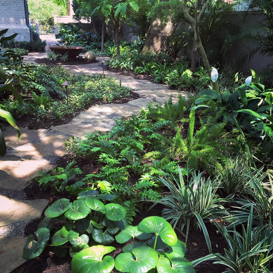 Shade path with tropical landscaping